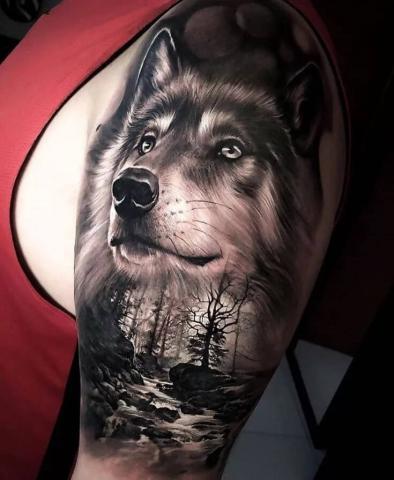 Męski tatuaż wilk na ramieniu