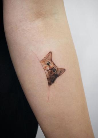 Tatuaż głowa kota
