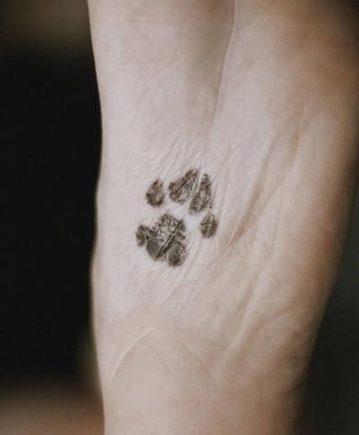 Tatuaż ślad łapy na stopie