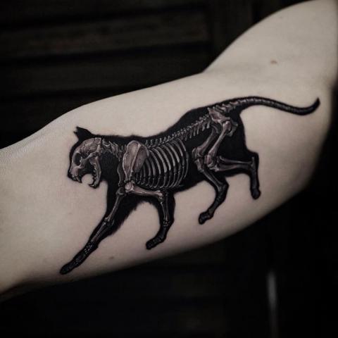 Tatuaż szkielet kota