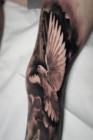 Gołąb tatuaż