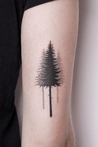 Tatuaż drzewa damski