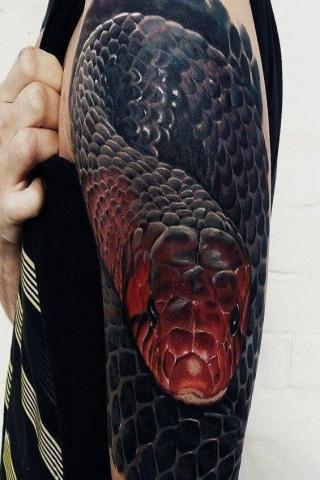 Wąż 3D ręka tatuaż